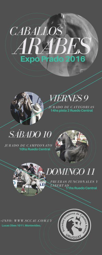 Expo Prado 2016