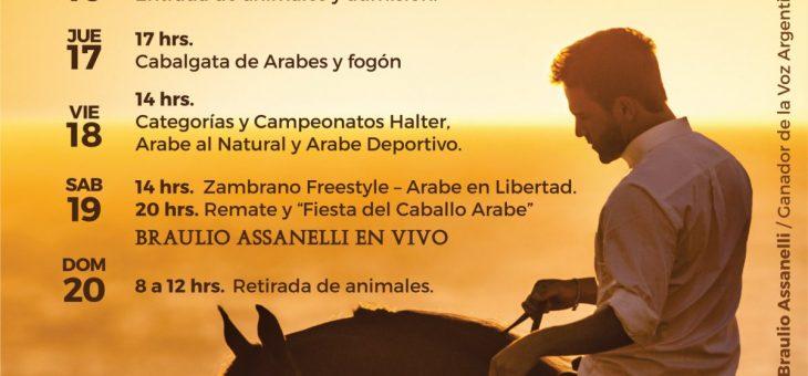 Semana Internacional del Caballo Árabe 2019 ¡con Braulio!