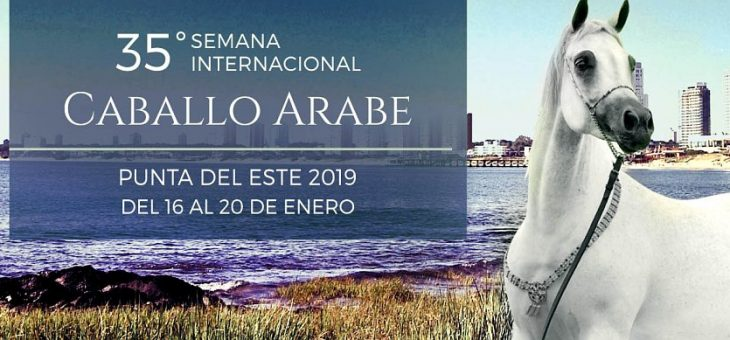 Semana Internacional del Caballo Árabe 2019