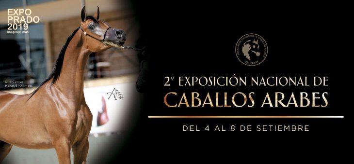 2ª Exposición Nacional de Caballos Árabes